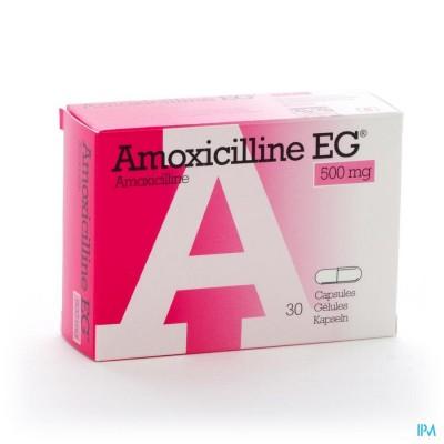 Amoxicilline Eg Caps 30 X 500mg
